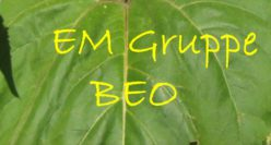 EM-Gruppe BEO